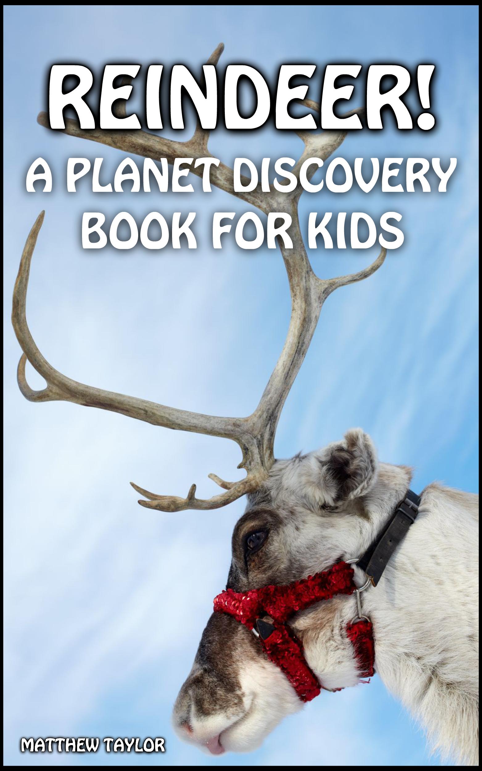 reindeer cover final
